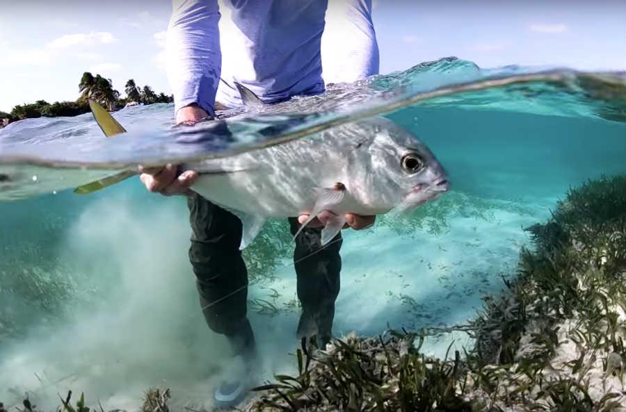 In unserem Film-Tipp geht es nach Mexiko ins Salzwasser nach Xcalak.