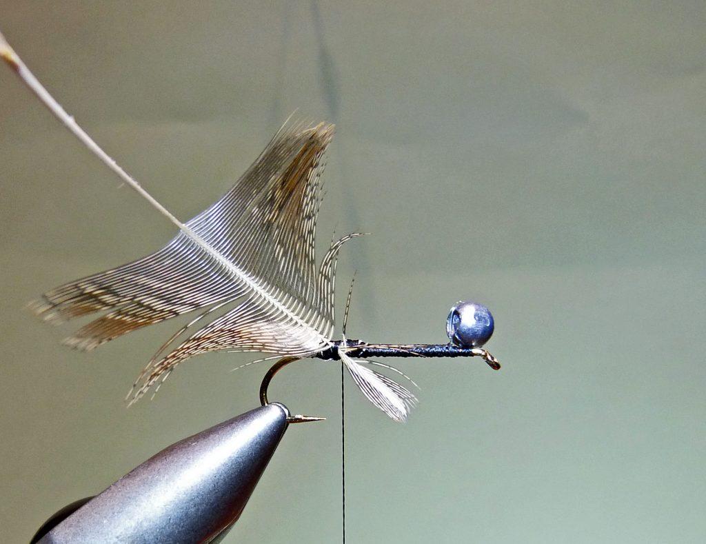 Köcherfliegenlarve Peeping Caddis 4