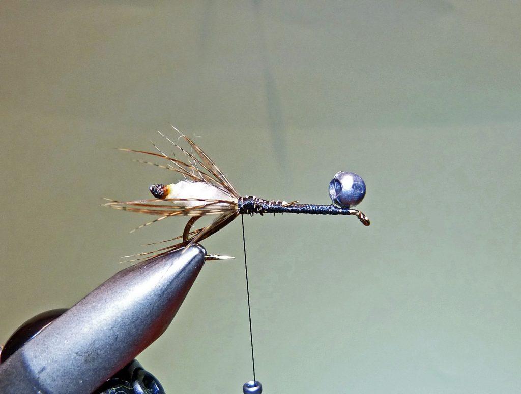 Köcherfliegenlarve Peeping Caddis 5