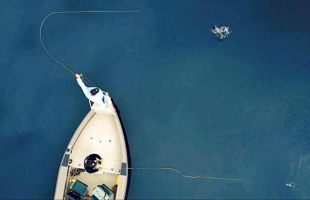 ORVIS Film Tipp- Die besten Filmszenen für Fliegenfischer