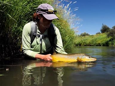 Orvis-Film-Tipp-Watch-Before-You-Cast-Fliegenfischen-Neuseeland-Bachforelle